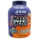 Mass Factor