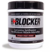 Isatori H+ Blocker Spiked Fruit Punch 600 grams