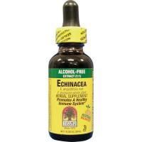 Nature's Answer Alcohol Free Echinacea Liquid Extract 1 fl oz