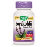 Nature's Way Coleus Forskohlii (20% Forskolin) 60 Capsules