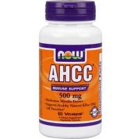 Now Foods AHCC 500mg 60 Vege Caps