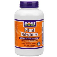 Now Foods Plant Enzymes 240 Vegetable Capsules