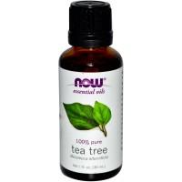 Now Foods Tea Tree Oil 1 Fl Oz