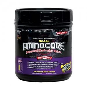 AminoCore 400 Grams