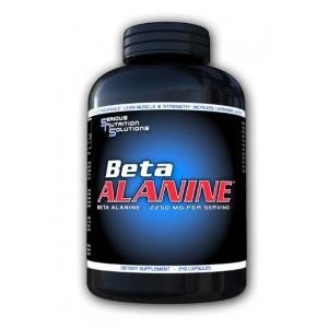 Beta Alanine 2250mg 240 Caps