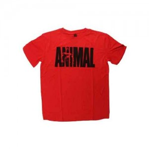 Animal Iconic Tee Red 2XL